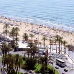 Alicante Dmc