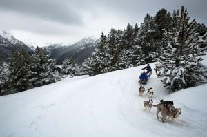 Andorra mushing